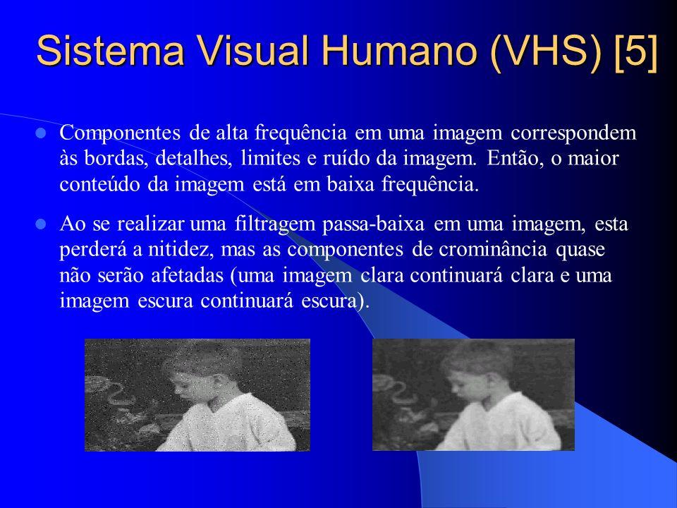 Sistema Visual Humano (VHS) [5]